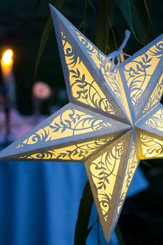 Found it on etsy :paper-star-lantern-with-floral-cut outs but i can make it myself