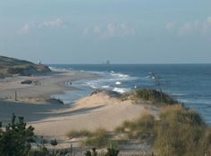 Cape Henlopen State Park- We're rebuilding our beaches. I've participated in beach grass plantings to strengthen the dunes. Lewes Delaware, Delaware Bay, Delaware Facts, Beach Fun, Beach Trip, Great Places, Places To Visit, East Coast Road Trip, Ocean City Md