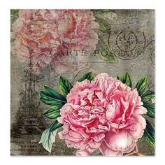Vintage Peonies French Shower Curtain