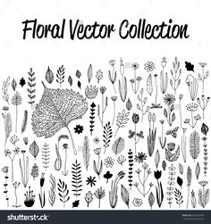 Floral Vector Set With Floral Vector Design Elements. Hand Drawn Floral Vector Set: Flowers And Leaves. Hand Drawn Floral Vector Vintage Design Ornament. Retro Floral Vector. Monochrome Floral Vector - 495660799 : Shutterstock