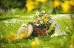 Rosen Tee, Yellow Theme, Bird Feeders, Greeting Cards, Bouquet Flowers, Garden, Pretty, Outdoor Decor, Artist
