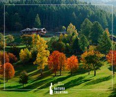 Autunno: un tripudio di colori in Valle dei Mocheni e in tutto il Trentino. Scopri tutti i nostri itinerari sul sito: http://www.cavitnaturatrentina.it/itinerari-trentini