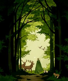 Into the Woods #APH England