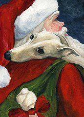 Pets Paintings - Greyhound and Santa  by Charlotte Yealey
