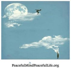 """""""You see things; and you say, 'Why?' But I dream things that never were; and I say, 'Why not?'"""" ~George Bernard Shaw"""