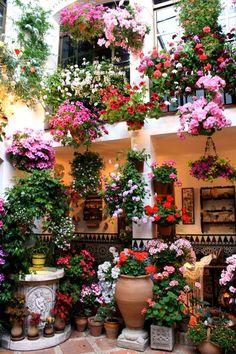 ^Colorful courtyard in Córdoba, Spain