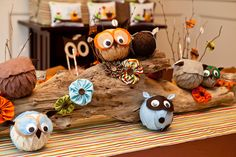 Owls and Raccoons