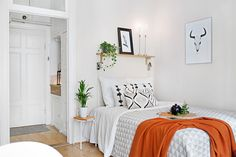small apartment / studio apartment
