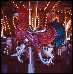 Carousel Animals...Rooster by laura_bostonthek, via Flickr
