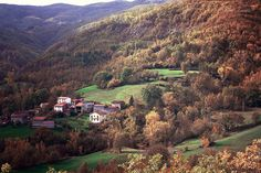 Autumn in Pomarolo, Ferriere (Piacenza) by Irene Zanelli via Flickr