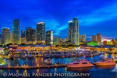 Miami Skyline Bayside