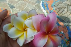More of my favourite flowers, plumeria!!