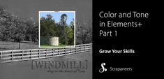 Part 1 Reviewing Elements+ Color and Tone
