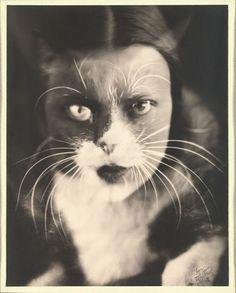 Ванда Вульц. «Я плюс кошка». Портретистка Вульц, связанная с движением итальянских футуристов, сделала этот кадр путем соединения на листке фотографической бумаги двух негативов — с изображением своего лица и морды своей кошки.