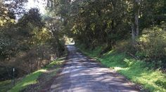 Lone Tree Road,  Hollister California   San Benito County