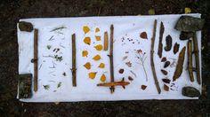 Metsän eri värejä. Plastic Cutting Board