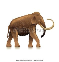 Mammoth isolated on white photo-realistic vector illustration