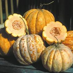 """Melon - """"Delice de Table"""" - true French cantaloupe - ribbed melon with sweet orange flesh - weigh 1-2lbs - now hard to find outside of France 85-90 days"""