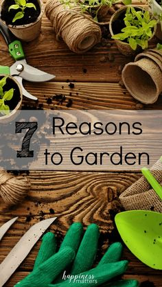 Gardening is a very peaceful and therapeutic hobby.  I never thought that getting my clothes dirty, hands torn up, and fingernails beyond repair would equate to happiness. Here are my top 7 reasons to garden! via @jen_dunham