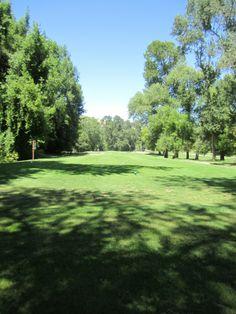 Willow Park, Castro Valley Hayward California, California California, Castro Valley, San Leandro, East Bay, Bay Area, Acre, Golf Courses, Heart