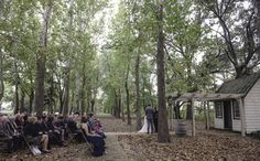 Nassau Valley Vineyards Fall Wedding under the Arbor
