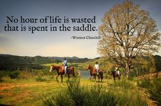 1000+ images about Horse quotes on Pinterest