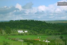 Casa Típica em Monte Alentejano in Alvito Municipality