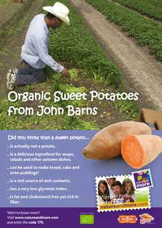The organic sweet potato is great in soups, baked in the oven or stir-fried. It's not only delicous, but also very healthy; low glycemic index and high in vitamins and phytonutrients. It's International Sweet Potato Week, so buy yourself some sweet potatoes and try something new! #organic #sweetpotato #sweetpotatoweek #natureandmore