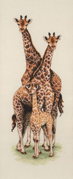 Giraffe Family - Anchor cross stitch kit