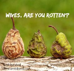 """""""Wives, are you rotten?"""" 3.20 Rotten: It means something that is decaying or infected.  Ladies, our Proverbs passage tells us we can be like rotten fruit to our husbands! But we have a choice. We can, also, choose to be like crowns bringing them honor through our lives. Which one are you?"""