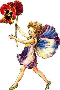 Pansy fairy