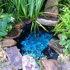 Pond with shells to create a tranquil feeling.