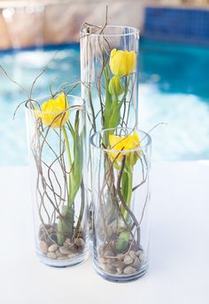 We're also considering centerpieces similar to these, though I'd swap out the tulips for orchids, calla lilies, or something else that I actually like.  I would also use dark river rock, but I'd definitely keep the three vases of varying sizes and the curly willow.