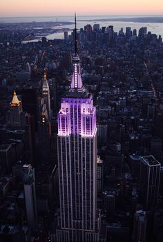http://www.marchofdimes.org/news/empire-state-building-lights-purple-for-2013-world-prematurity-day.aspx