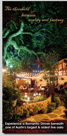 Tree House Grill - Austin, TX - Someone recommended this place, and it looks really romantic