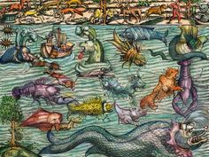 Sharks Were Once Called Sea Dogs, And Other Little-Known Facts | Science | Smithsonian