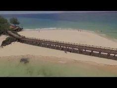 Paradise of Zanzibar
