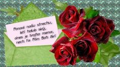 meninové priania Nasu, Singing, Tableware, Flowers, Plants, Dinnerware, Tablewares, Plant, Dishes