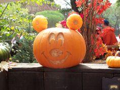 Mickey Mouse Halloween pumpkin - Disneyland.