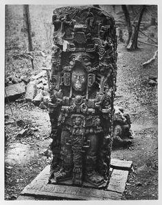 Stela N, 1885, Maudslay