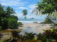 Manuel Antonio Costa Rica. I've stood right there. I've been on that beach, climbed on that rock.