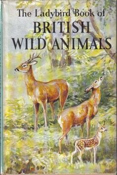 The Ladybird book of British Wild Animals