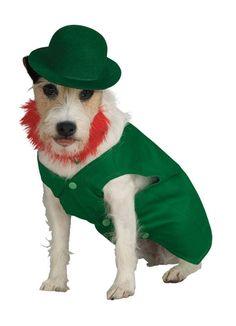 Leprechaun St. Patricks Day Pet dog cat animal  costume