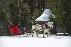 Horse drawn sleigh at Topnotch Resort and Spa, Vermont | Great Ski Resort Spas | Organic Spa Magazine