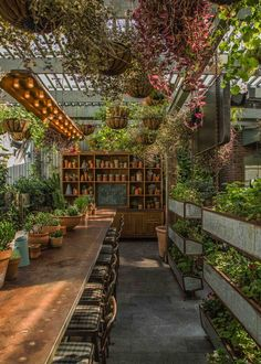 Love ❤ Pure inspiration. Surrounded by plants in the greenhouse at such a beautiful table you can do everything you want. Eating, meeting - entertain - talk with people, making love, working, reading, researching and more.