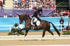 That very special day, one we shall never forget. Supreme Products sponsored Charlotte Dujardin riding her way in to the history books on Carl Hester and Roly Luard's Valegro. Valegro was produced using the Supreme Products Professional Collection - and you can tell, from his shine! #charlottedujardin #valegro #london2012 #dressage #supremeproducts #charlotteandvalegro #showshine #showsheen #groomingproducts #grooming