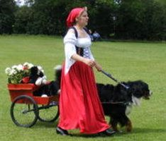 Pasturegreen Bernese Mountain Dogs Carting with your Bernese Information Page