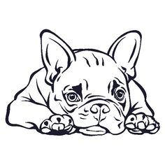 Car Sticker French Bulldog Name Car Auto Aufkleber Französische Bulldogge Name Autoaufkleber French bulldog lying down and slightly tired. French Bulldog Names, French Bulldog Blue, Pencil Drawings Of Animals, Art Drawings, Bulldogge Tattoo, Design Autos, Dog With Glasses, Dog Collar Tags, Showing Livestock