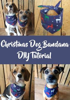 dog bandana pattern  free sewing tutorial diy