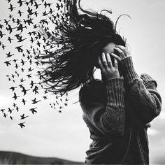 amazing, art, awesome, birds, black and white